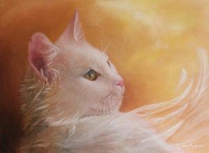 Katten Engeltje
