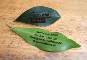 concept en ontwerp groen visitekaartje